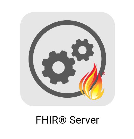 FHIR® Server